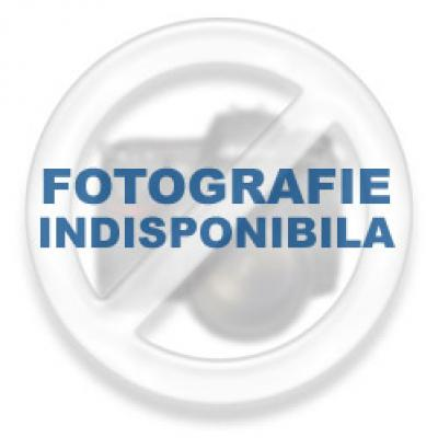 A Brief and Practical Guide to EU Law, 3rd Edition